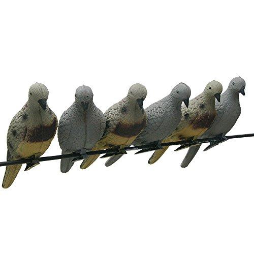SPORTSMANN Tier Taube Köder 3D Vögel Zielscheiben Eva Schaum Bogenschießen Lebensechte für Bogen Praxis Schießen Jagd Tierköder Ziel Pfeile Outdoor Dekoration von Baum im Park Garten (Pack of 4)
