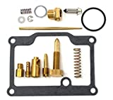 DP 0101-012 Carburetor Rebuild Repair Parts Kit Compatible with Polaris 89-93 Trail Boss 250 2x4 4x4, 89-99 Trail Boss 250, 90-95 Trail Blazer 250