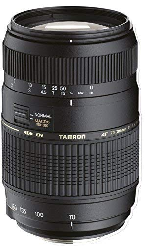 Tamron 70-300mm Di LD - Objetivo para Sony (70-300mm, f/4-5.6, Macro, 62mm), color negro