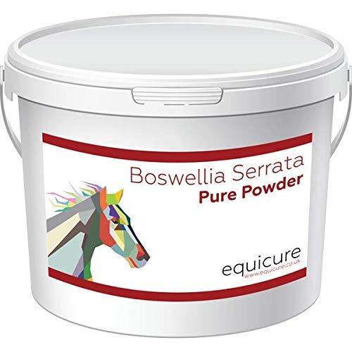 Equicure, Boswellia Serrata, naturentzündungshemmend, schmerzlindernd für Pferde/Ponys
