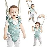 Se pone de pie y caminar ayudante de aprendizaje for el bebé, del bebé del niño del caminante Caminar Asistente, ponerse de pie y Ruta de Aprendizaje ayudante for el bebé, 4 en 1 Funcional Caminar arn