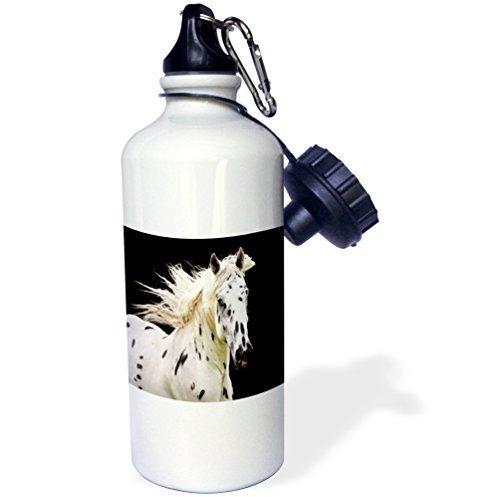 Cukudy Water Fles Cadeau, Mooie Appaloosa Paard Wit RVS Water Fles voor Vrouwen Mannen 21oz