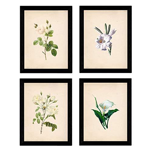 Set de cuatro láminas para enmarcar estilo botánica. Set soft white en tamaño A4 impreso en papel 250 gr y tintas alta calidad. Fondo papel Vintage. Flores Tonos claros. Sin marco.