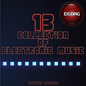 Collection Of Electronic Music, Vol. 13