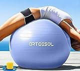 arteesol Pelota de Gimnasia y Pilates, 45 cm/55 cm/65 cm/75 cm/85 cm, Incluye Bomba antipinchazos, para Yoga, Ejercicio, Fitness y Fisioterapia