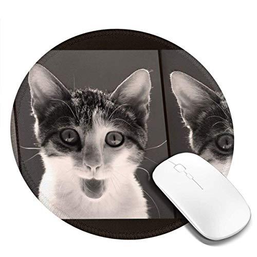 Kleine runde Mauspad 7,9 x 7,9 Zoll Honig Katze von drei Mal rutschfeste Gummi Desktop Arbeitsmatte Matte Gaming Computer PC Mousepad für zu Hause / Büro