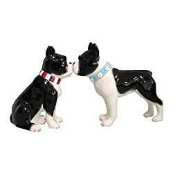 boston terrier s/p shakers