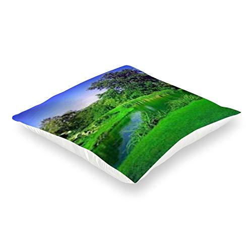 DKE&YMQ Funda de almohada de satén, cuadrado, cuerpo de agua, naturaleza, vegetación, verde, azul, paisaje natural, hierba, medio ambiente natural, recursos hídricos