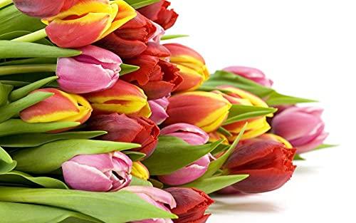 Puzzle De 1500 Piezas para Adultos Rompecabezas del Desafío De Los Niños Flor De Tulipán De Color Juego Formación De Equipos Regalos para Amigos