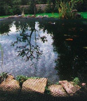 Garten Star -  GartenStar 3056600