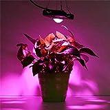 Vollspektrum 50W Pflanzenwachstumslicht, COB LED Pflanzenlicht, geeignet zur Ergänzung von saftigem Gemüse und Blumen im Gewächshaus blue-US