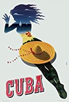 キューバ南アメリカ旅行、錫サインヴィンテージ面白い生き物鉄の絵金属板ノベルティ