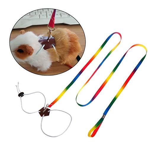 Autone Hundeleine für kleine Haustiere, verstellbar, für den Außenbereich, bunt, 1,3 m lang, für Geschirr, Hamster, Kaninchen, Chinchilla, Eichhörnchen, Tierprodukte
