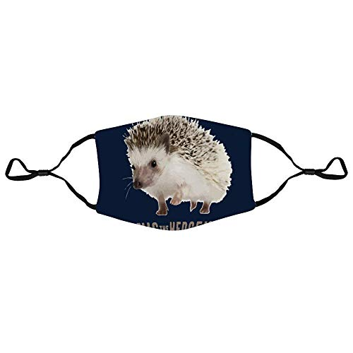Mundschutz The Real Sonics The Hedgehog Personalized Anti-Dust Face Scarf Mouth Cover Face Cover