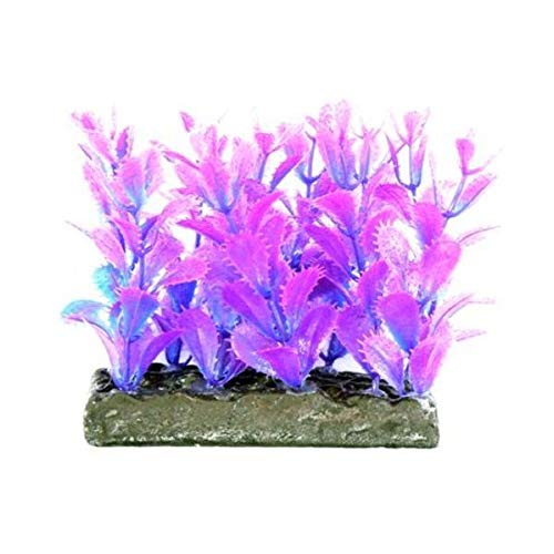 Cheeko Foregrounder Aquatic Cacti, 4-inch