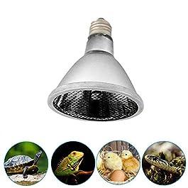 Infrared Heat Lamp Heat Lamp For Reptiles Heat Lamp Bulb Heat Lamp Reptile Heat Bulb Uvb Bulb Reptile Ceramic Heat Lamp Bulbs Ceramic Heat Lamp Kit