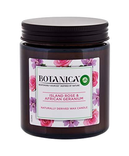 Air Wick Botanica Duftkerze Island Rose und African Geranium Nachhaltig 205g