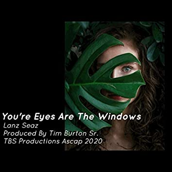 You're Eyes Are The Window