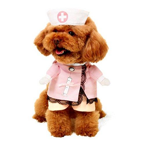 Pegasus infirmière Costume pour chien avec chapeau Cosplay Manteau pour chien avec nœud en ruban bordure en dentelle rose, toutes saisons pour petit chien chat chiot