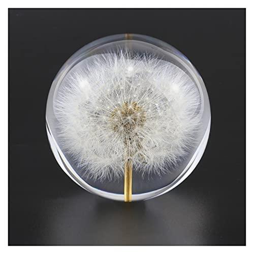 xinxinchaoshi Sfera Vetro Sfera Cristallo Dandelion Crystal Glass Resina Lens Ball 70mm Piante Naturali Specimen Feng Shui Flowers Christmas Love Regalo Home Decor Globe Decorazione Palla