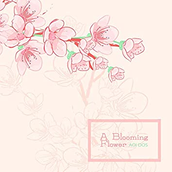 A Blooming Flower