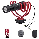 Camera Video Microphone VF-M10 Cardioid Condenser Shotgun Microphone with Shock Mount, Recording Mic for Nikon,Canon,Sony DSLR Camera/Camcorder/iPhone Android for TikTok YouTube Facebook Vlogging