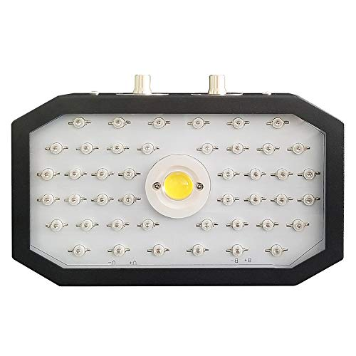 YLME 1000W LED Plant Growth Lamp Full Spectrum Rotary Adjustment Switch Plant Growth Lamp, Suitable for Indoor Vegetables, Flowers And Greenhouse Planting (Actual Power 110Watt)