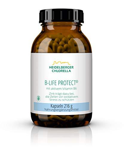 Heidelberger Chlorella – B-Life Protect Kapseln, mit aktivem Vitamin B6 (Pyridoxal-5-Phosphat), vegan, hochdosiert, gute Bioverfügbarkeit, hergestellt in Deutschland, 216 g, 360 Kapseln