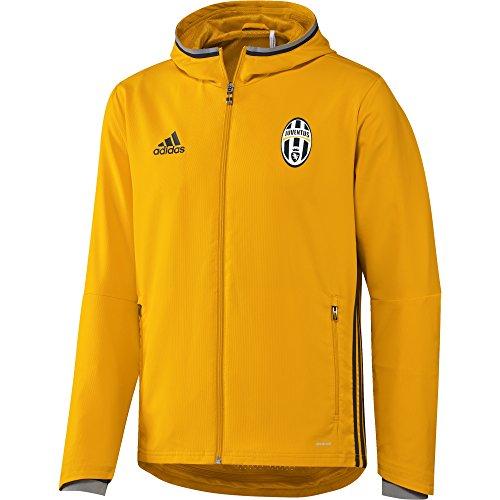 adidas Herren Juventus Turin Präsentationsjacke, Collegiate Gold/Dark Grey/Solid Grey, L