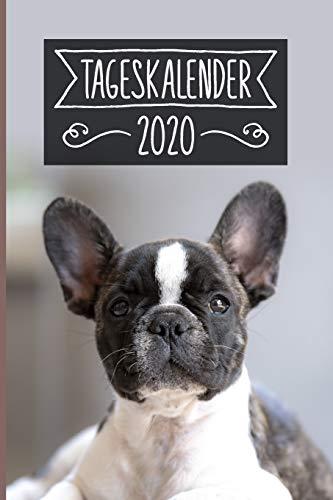 Tageskalender 2020: Terminkalender ca DIN A5 weiß über 370 Seiten I 1 Tag eine Seite I Jahreskalender I Französische Bulldogge I Hunde