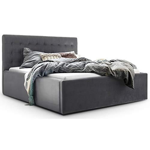 Bett mit Bettkasten Samt Molly XXL-Stauraum Polsterbett Designer Doppelbett Lattenrost massiv (Grau, 180 x 200 cm)