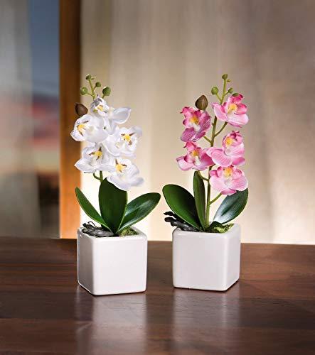 Serie de 2 macetas de orquídeas, Planta sintética Bien imitada, mold