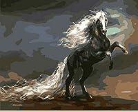 油絵 数字キットによる デジタル インテリア キャンバスの油絵子供 ホーム オフィス装飾 40x50センチ-長い尾を持つ黒い馬_額装