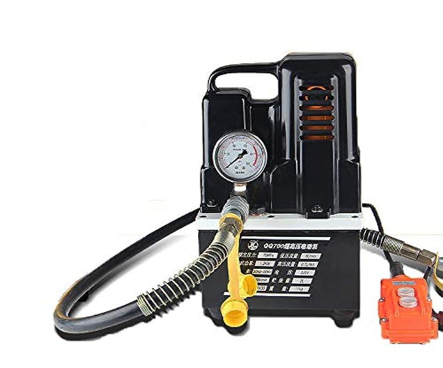 童謡強化積極的にCGOLDENWALL 2L電動油圧ポンプ小型超高圧 防振圧力計付き (2L電動ポンプ)