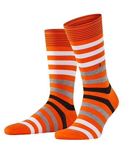 Burlington Herren Socken Blackpool, Baumwolle, 1 Paar, Orange (Flash Orange 8036), 40-46 (UK 6.5-11 Ι US 7.5-12)