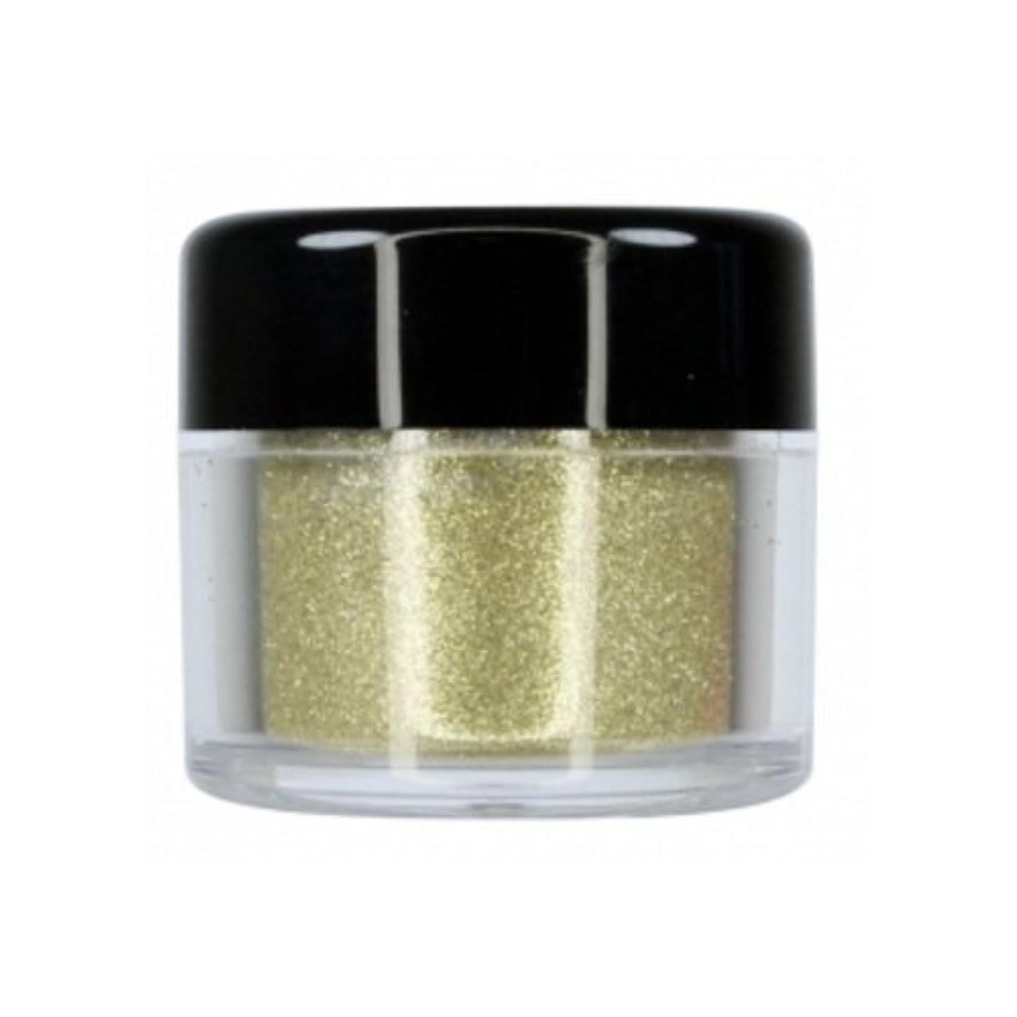チャネル途方もないポータブルCITY COLOR Sparkle & Shine Loose Glitter - Sparkler (並行輸入品)