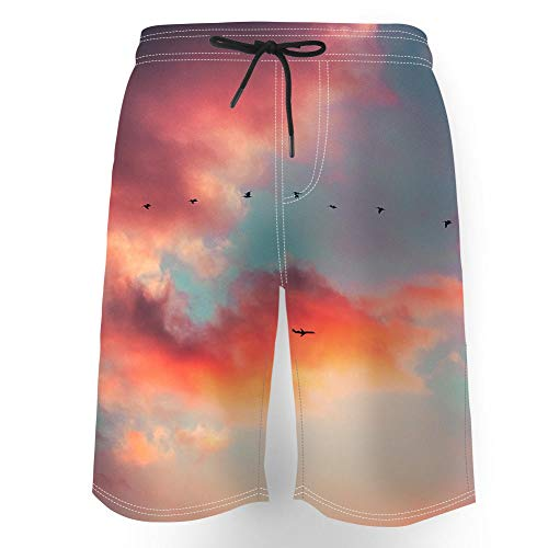 3D Pantalones Cortos Playa Hombre,Impreso Divertido Secado rápidobañadores Hombre Forro de Malla,con Bolsillo,Anochecer Salvaje Ganso avión