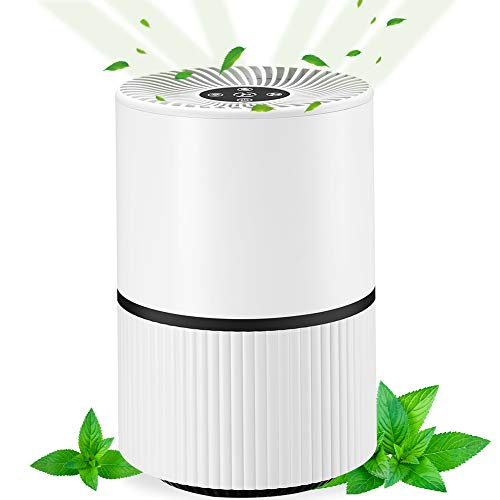 GUIFIER Air Purifiers 5 in 1 Portable Air Purifiers with Anion Purification, Aromatherapy Function, Timers, Night Light, touch buttons,With USB power cable, for Indoor Air Purification.