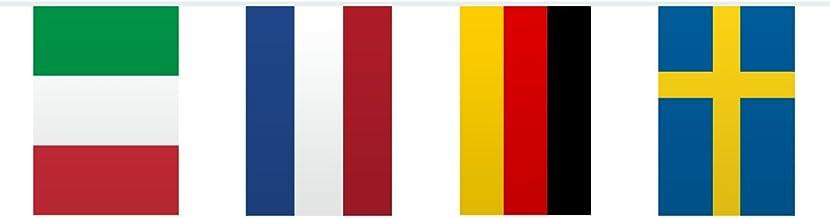 Bandera de Europa Guirnalda Para Temática Fiesta - 10 metros - Multicolor: Amazon.es: Juguetes y juegos