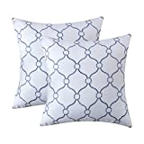 TOPLUXE 2 Pack Embroidery Throw Pillow Cover 18 x 18 Inches, Geometric Pattern Home Decorative Pillow Covers, Square Linen Cushion Cover Pillow Case for Couch Sofa Living Room Bedroom(White Blue)