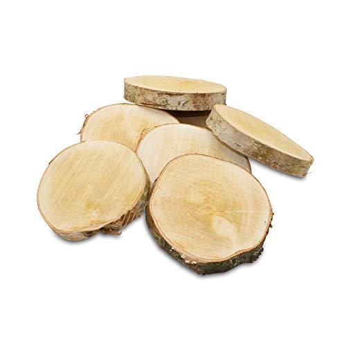 GREENHAUS XXL Birkenscheiben aus Deutschland 10-15 cm 10 Stück sägerau Holzscheiben Baumscheiben Baumstamm Holzdeko