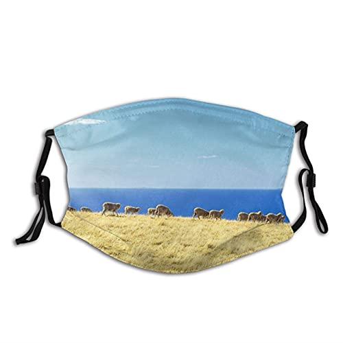 Máscara facial de moda cómoda Ovejas Rebaño Islas Océano a prueba de sol Moda Bandana Headwear para la pesca