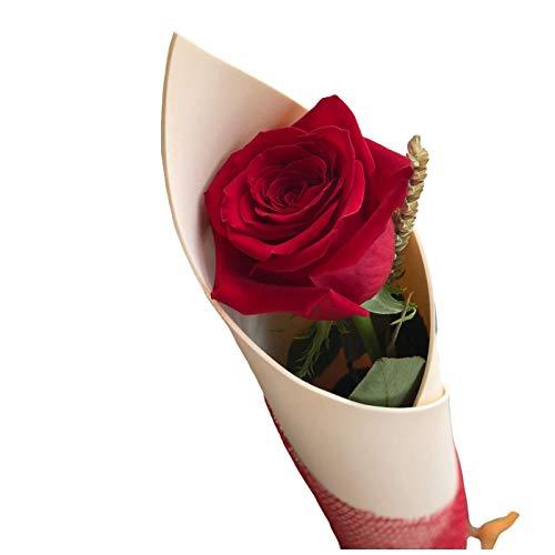 Botanic Dessign - Rosa roja de Sant Jordi ENTREGA EL DÍA DE SANT JORDI Elegante diseño de rosa natural de Sant Jordi para ramo de flores montada en cono.