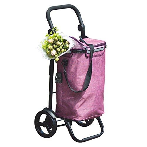Einkaufswagen Trolley Last 25 kg Kapazität 40L Aluminiumlegierung 8-Zoll-Räder Mode Klappgriff einstellbar Wärmedämmung (Farbe : A)
