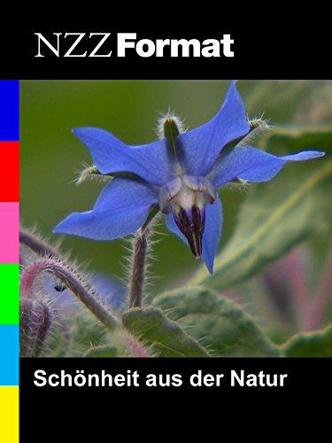 NZZ Format - Schönheit aus der Natur