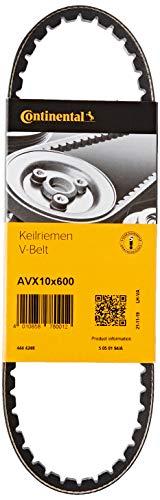 CONTITECH AVX10X600 Keilriemen