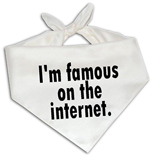 I'm Famous On The Internet - Dog Bandana One Size Fits Most - Funny Joke Humor