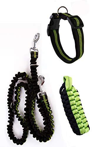 kitanimo - Kit para perro, con correa para un collar negro y verde fluorescente