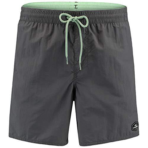 O'Neill Herren Pm Vert Boardshorts, Asphalt, L