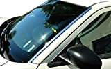Made in USA! Compatible with 2005-2010 Chrysler 300 300C Dodge Magnum Front Windshield Post Trim Wide 2PC